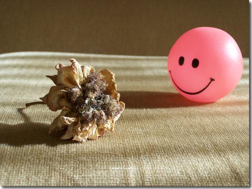 pelota y flor